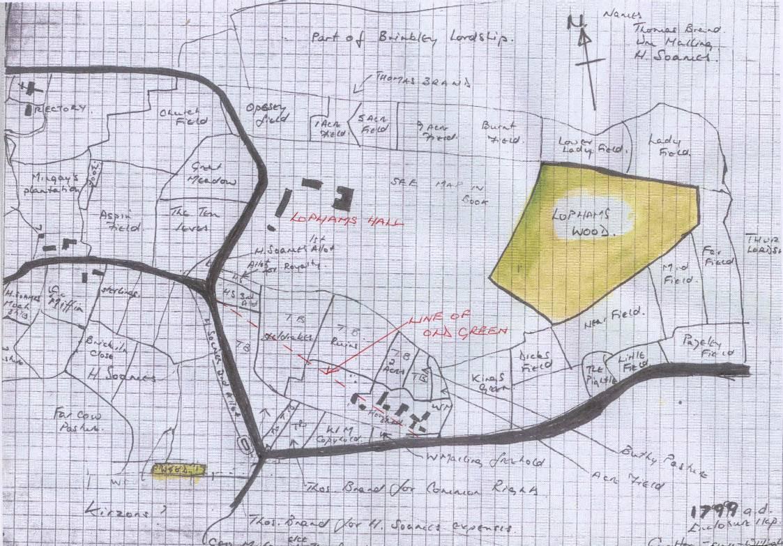Think green community essay